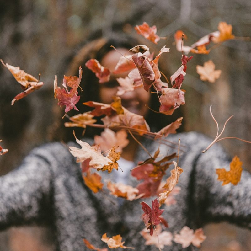 Becoming Wholly Aligned as the Seasons Change