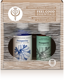 FEEL_GOOD_Prosperity__29262.1431507879.220.290
