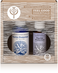 FEEL_GOOD_Psychic_Protection__69501.1431508253.1280.1280