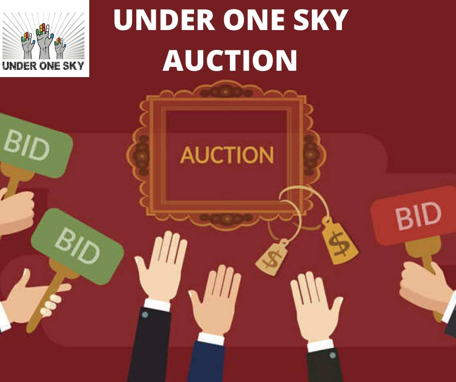Under One Sky Online Auction for Homelessness – Join Me at the Closing Party!