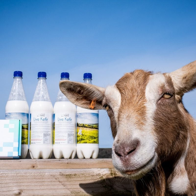 Chuckling Goat Launch a Home Microbiome Testing Kit