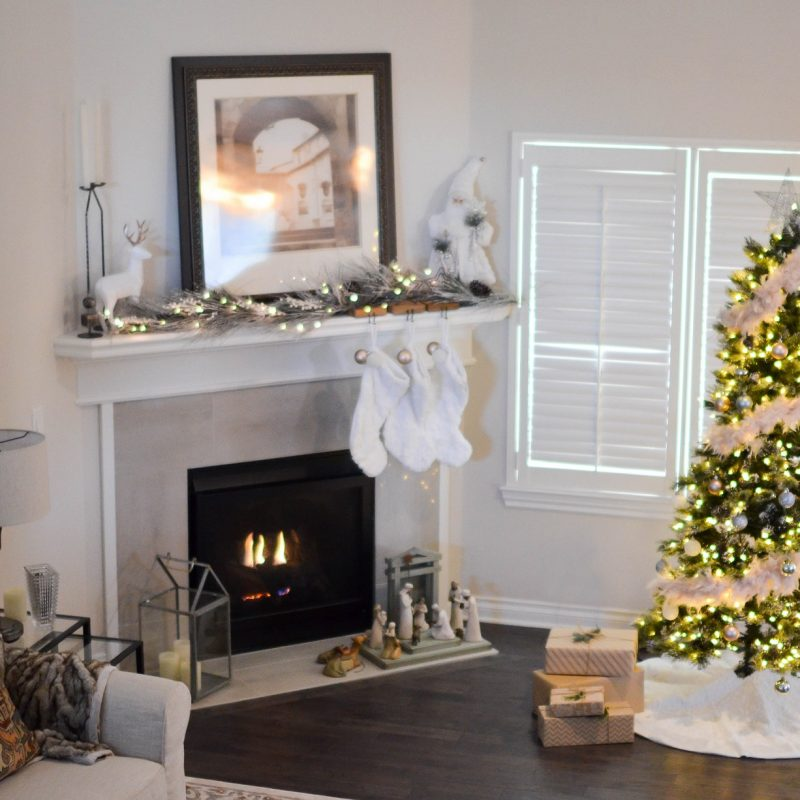 Get your home (naturally) sparkling clean this Festive Season with NU-ECO!