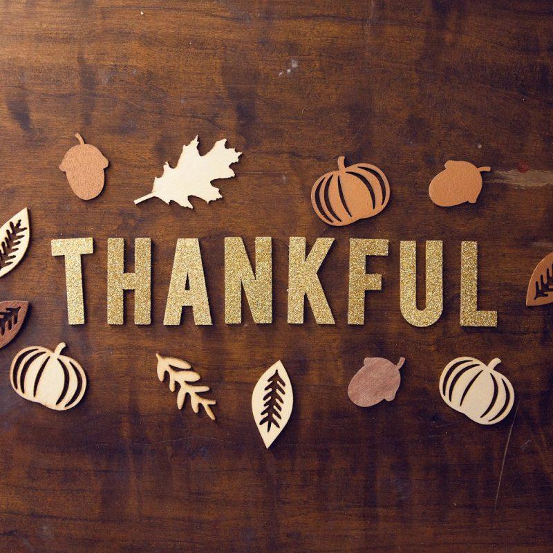 Happy World Gratitude Day!