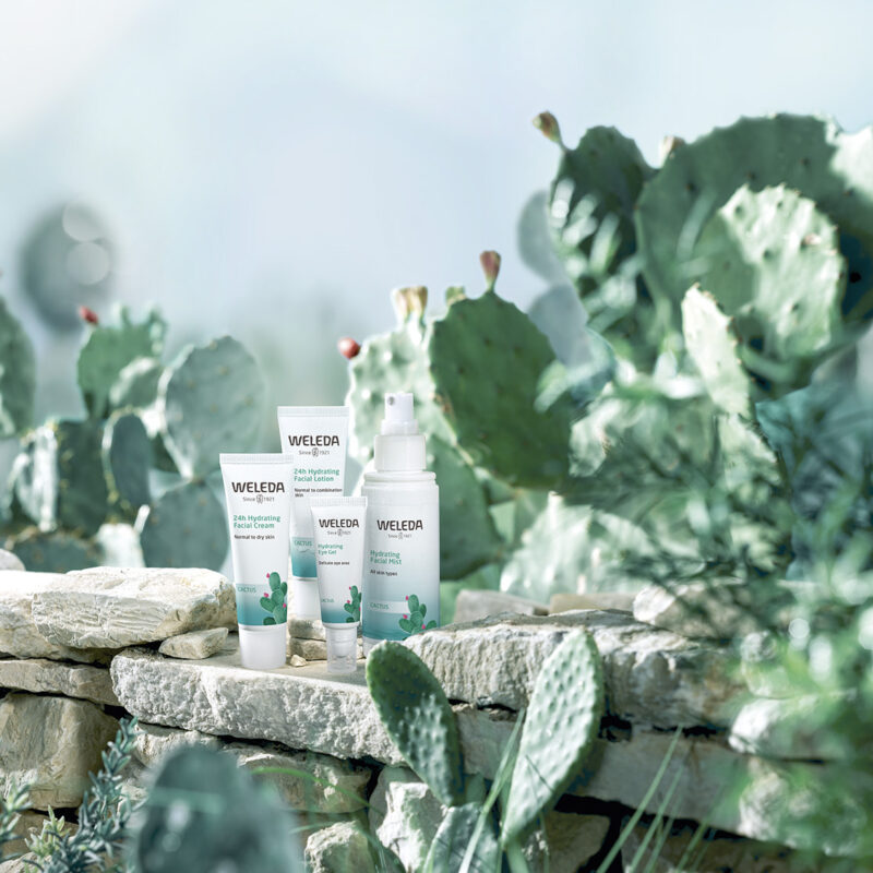 Win Weleda's new Prickly Pear Cactus Hydrating Facial Care Collection!