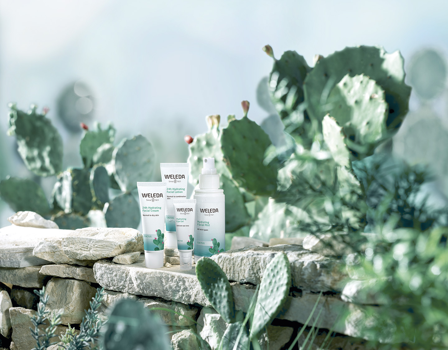 Prickly-Pear-Cactus-Hydrating-Facial-Care