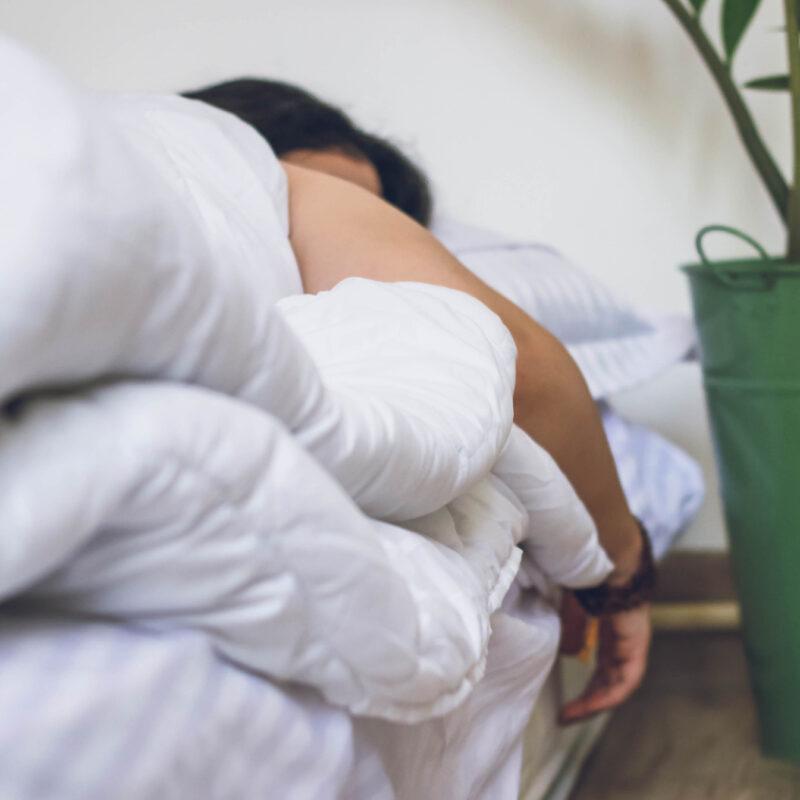 A good night's sleep with Dajan Organics