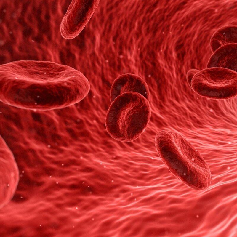 Benefits of Ordering Online Blood Tests