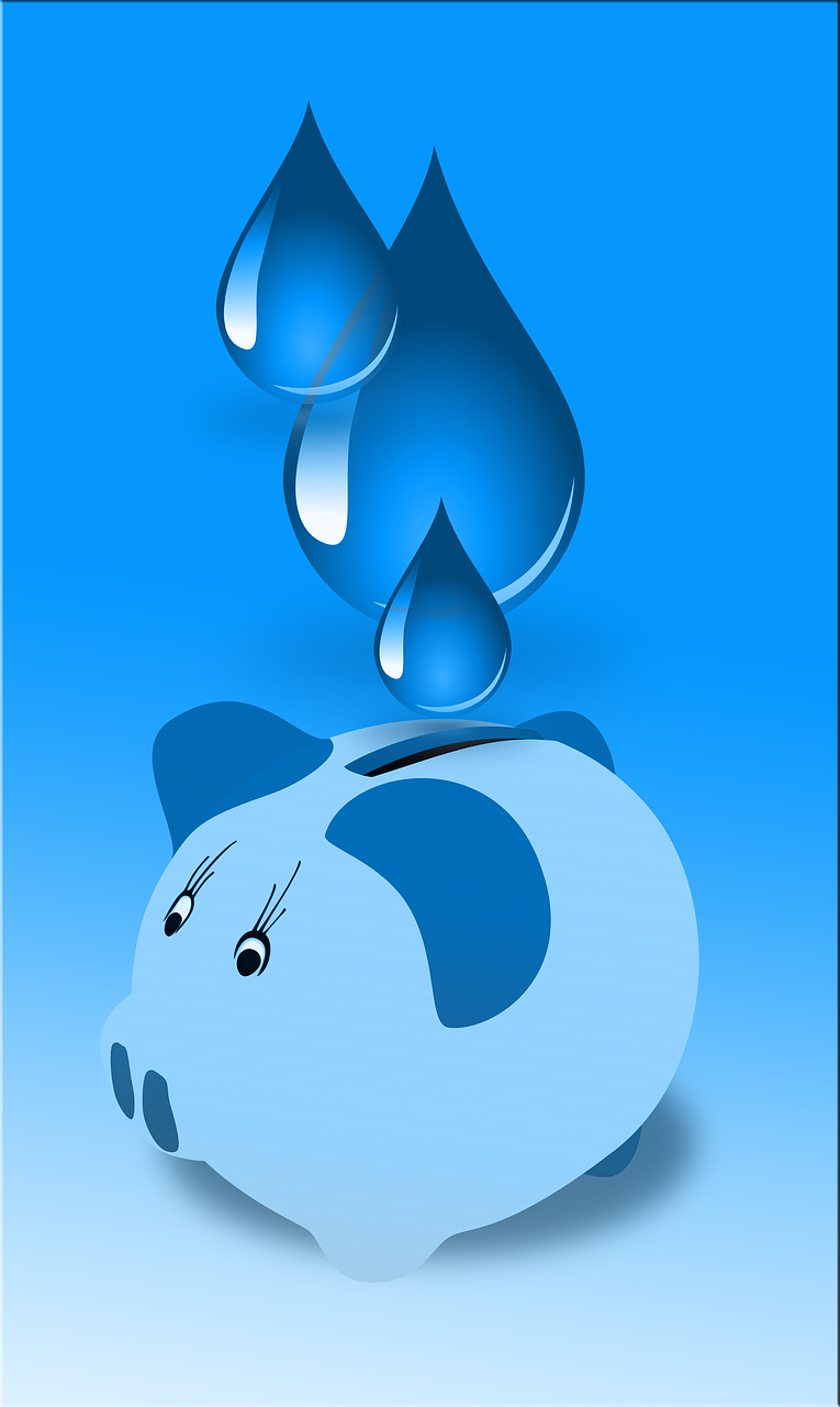 saving water piggy bank